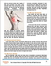 0000094701 Word Templates - Page 4
