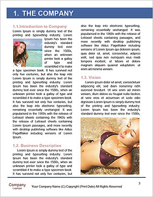 0000094710 Word Template - Page 3