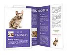 0000094717 Brochure Templates