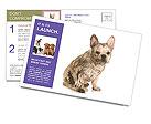 0000094717 Postcard Templates