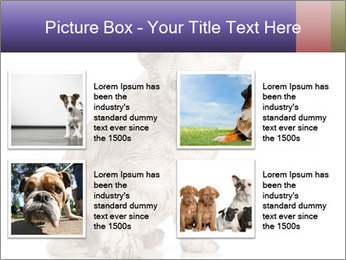 Dirty dog PowerPoint Template - Slide 14