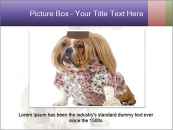 Dirty dog PowerPoint Template - Slide 16