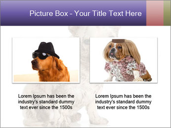 Dirty dog PowerPoint Template - Slide 18