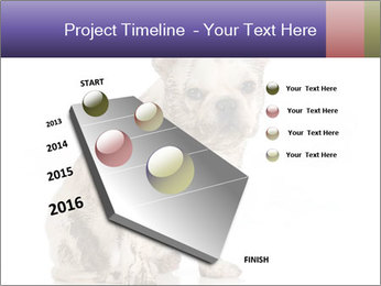 Dirty dog PowerPoint Template - Slide 26