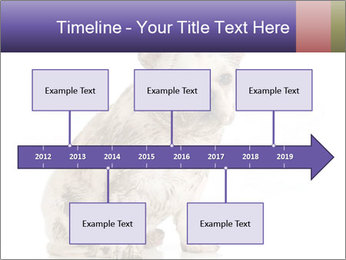 Dirty dog PowerPoint Template - Slide 28