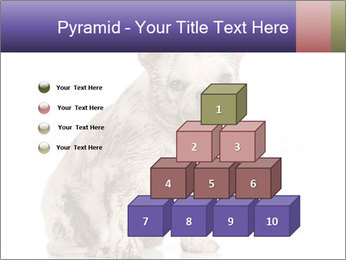 Dirty dog PowerPoint Template - Slide 31
