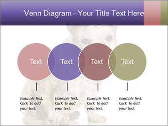Dirty dog PowerPoint Template - Slide 32