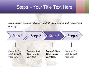 Dirty dog PowerPoint Template - Slide 4