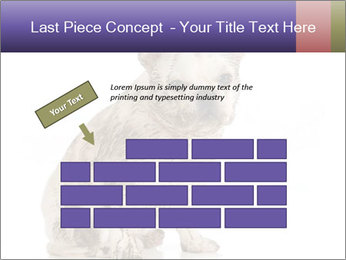 Dirty dog PowerPoint Template - Slide 46