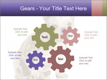 Dirty dog PowerPoint Template - Slide 47