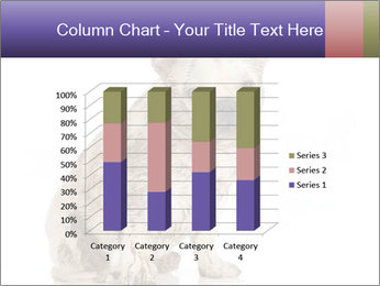 Dirty dog PowerPoint Template - Slide 50