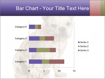 Dirty dog PowerPoint Template - Slide 52