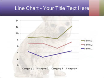 Dirty dog PowerPoint Template - Slide 54