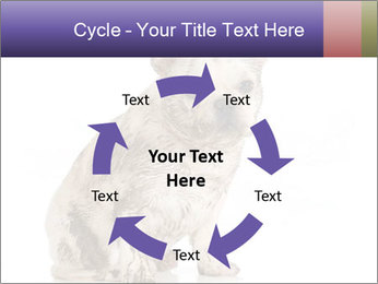 Dirty dog PowerPoint Template - Slide 62