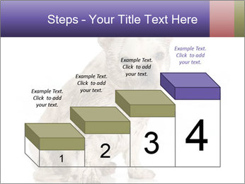 Dirty dog PowerPoint Template - Slide 64