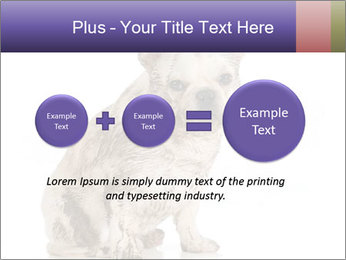 Dirty dog PowerPoint Template - Slide 75