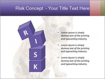 Dirty dog PowerPoint Template - Slide 81
