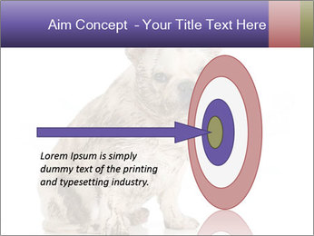 Dirty dog PowerPoint Template - Slide 83