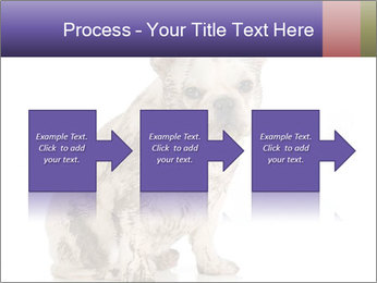 Dirty dog PowerPoint Template - Slide 88
