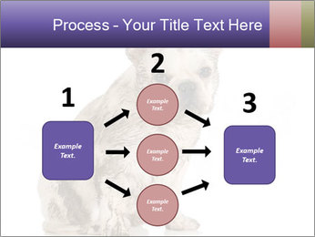 Dirty dog PowerPoint Template - Slide 92