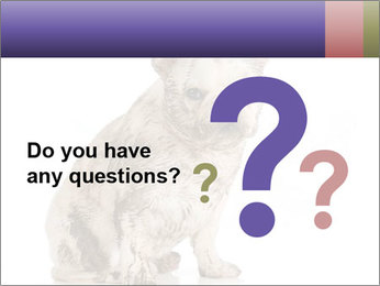 Dirty dog PowerPoint Template - Slide 96