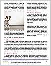 0000094717 Word Templates - Page 4