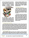 0000094719 Word Template - Page 4