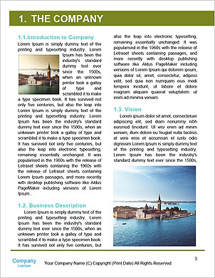 0000094720 Word Template - Page 3