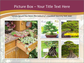 Flowers PowerPoint Template - Slide 19