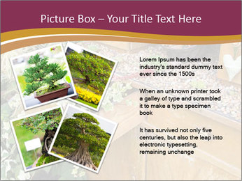 Flowers PowerPoint Template - Slide 23