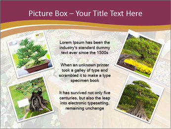 Flowers PowerPoint Template - Slide 24