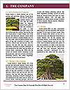 0000094722 Word Template - Page 3