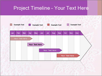 Christmas or New Year PowerPoint Template - Slide 25