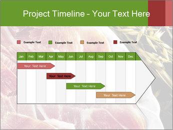 Spanish pata negra ham PowerPoint Template - Slide 25