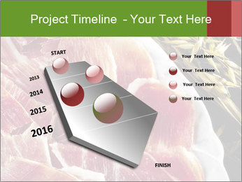 Spanish pata negra ham PowerPoint Templates - Slide 26