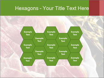 Spanish pata negra ham PowerPoint Templates - Slide 44