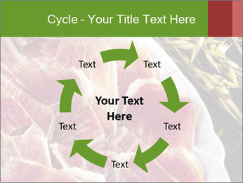 Spanish pata negra ham PowerPoint Templates - Slide 62