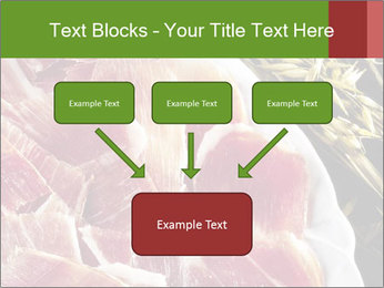 Spanish pata negra ham PowerPoint Templates - Slide 70