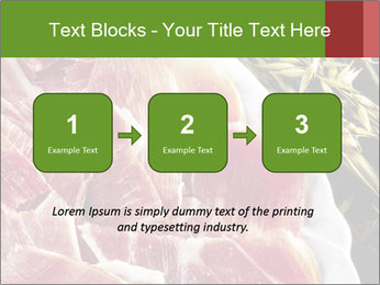 Spanish pata negra ham PowerPoint Templates - Slide 71
