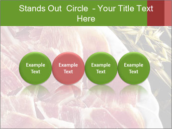Spanish pata negra ham PowerPoint Templates - Slide 76
