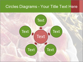 Spanish pata negra ham PowerPoint Templates - Slide 78