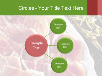 Spanish pata negra ham PowerPoint Templates - Slide 79