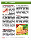 0000094736 Word Templates - Page 3