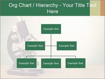 Vintage microscope PowerPoint Template - Slide 66