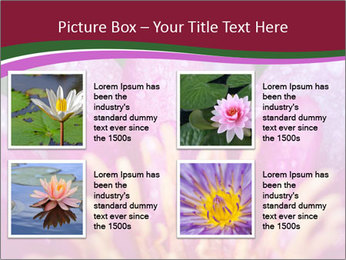 Pink water lily PowerPoint Templates - Slide 14