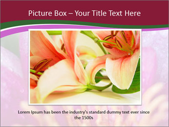 Pink water lily PowerPoint Templates - Slide 16