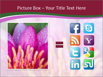 Pink water lily PowerPoint Templates - Slide 21