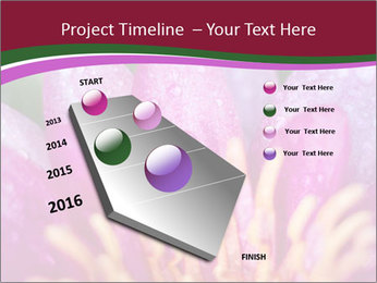 Pink water lily PowerPoint Templates - Slide 26