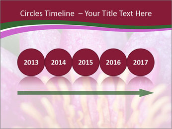 Pink water lily PowerPoint Templates - Slide 29