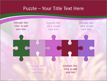 Pink water lily PowerPoint Templates - Slide 41